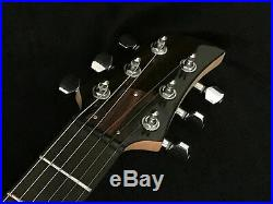 Rare Dan Armstrong Ampeg Acrylic Body Vintage Electric Guitar
